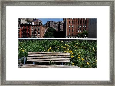 A Bench On The High Line In New York City Framed Print by Diane Lent