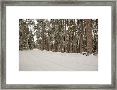 A Bend In The Road Framed Print by Tim Grams