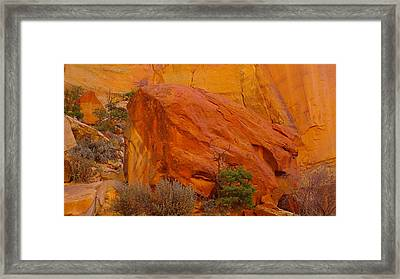 A Big Rock In The Canyon Framed Print by Jeff Swan