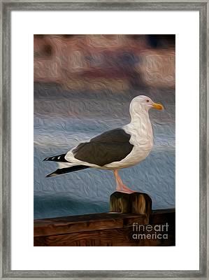 A Bird's Eye View Framed Print