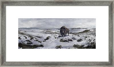 A Bison Latifrons In A Winter Landscape Framed Print by Roman Garcia Mora