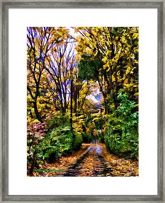 A Bit Of Autumn Framed Print by Aleksander Rotner