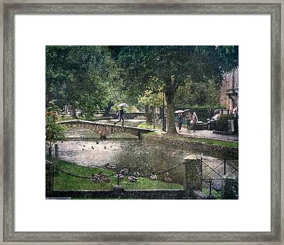 A Bit Of Rain Framed Print