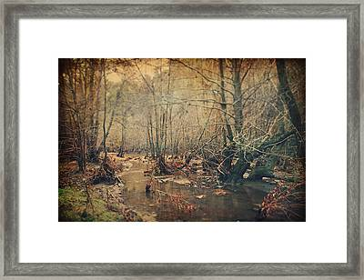 A Bitter Cold Framed Print by Laurie Search