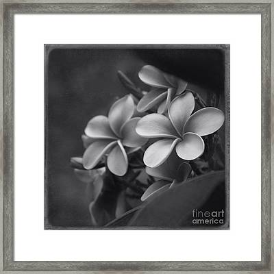 A Blessing Framed Print by Sharon Mau