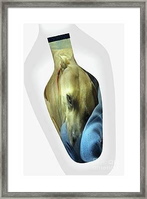 A Bottle Of Love Framed Print