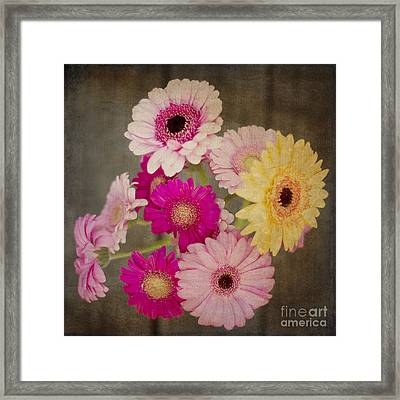 A Bouquet Of Gerbera Daisies Framed Print