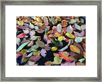 A Bowl Of Autumn Framed Print by Paula Tohline Calhoun