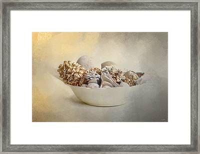 A Bowl Of Holiday Bounty Framed Print by Jai Johnson