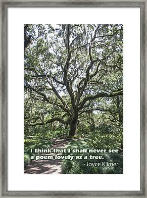 A Branched Poem Framed Print