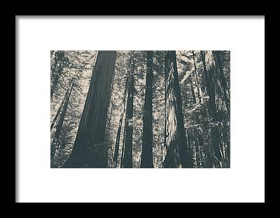 Northern California Framed Prints