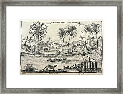A Bridge Framed Print by British Library