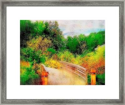 Bridge To Nature  Framed Print by Rick Todaro