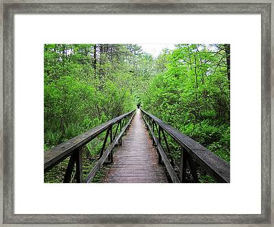 A Bridge To Somewhere Framed Print