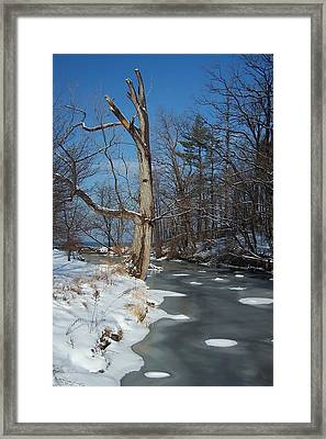 A Bright January Day By A Stream Framed Print