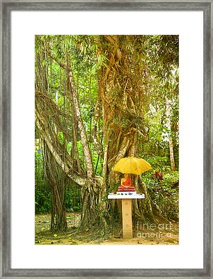 a Buddha shrine under a Bothi tree Framed Print by Regina Koch