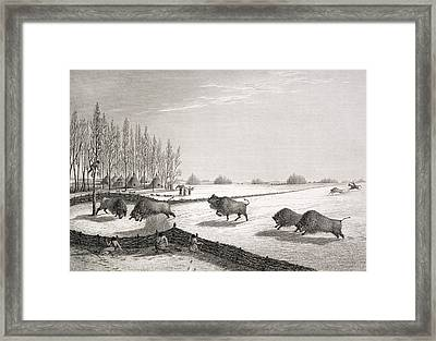 A Buffalo Pound Framed Print by George Back