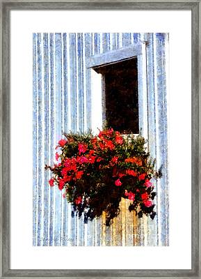 A Burst Of Joy Framed Print by Janine Riley