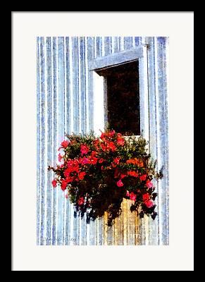 Sunlight On Flowers Mixed Media Framed Prints