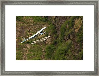 A Bush Pilot Flies His Float Plane Framed Print