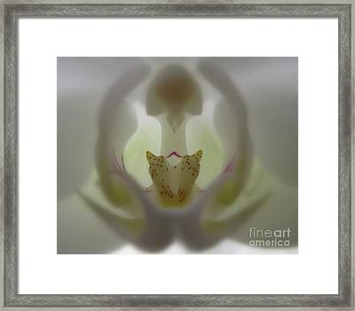 A Capella Framed Print by Tina Marie