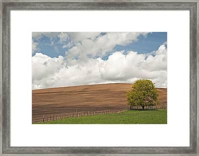A Casual Summer Framed Print by Latah Trail Foundation