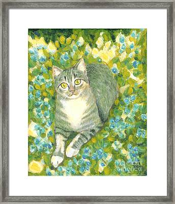 A Cat And Flowers Framed Print