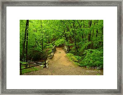 Century Old Stone Bridge Framed Print by Bob Sample