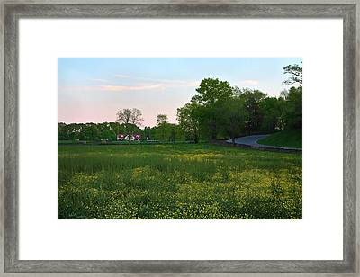 A Changing Of The Old Order Framed Print by Idintify Media
