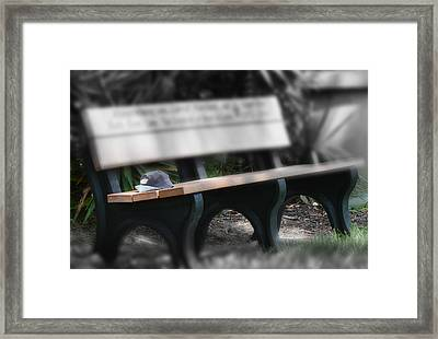 Framed Print featuring the photograph A Child Somewhere In My Dreams by DigiArt Diaries by Vicky B Fuller