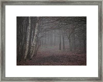 A Chill In The Trees Framed Print by Odd Jeppesen