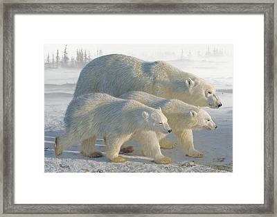 A Chill Wind Framed Print