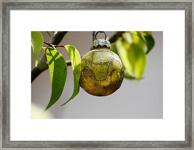 A Christmas Ornament Any Tree Framed Print by Carolina Liechtenstein
