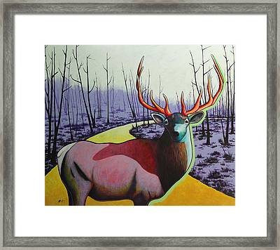 A Close Encounter In Yellowstone Framed Print by Joe  Triano