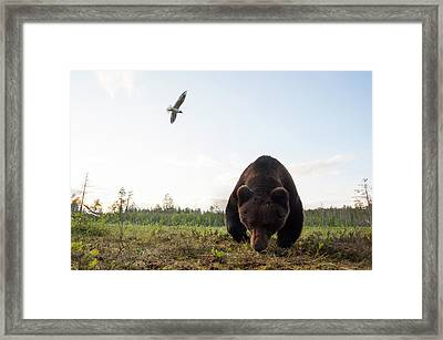 A Close Up Wide Angle Picture Framed Print by Sergio Pitamitz