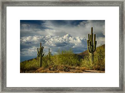 A Cloudy Day In The Desert  Framed Print