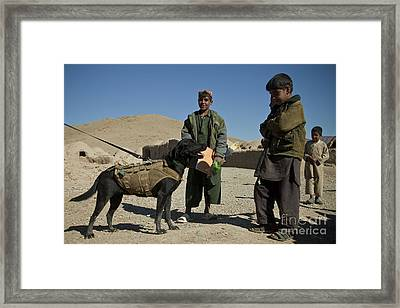 A Coalition Forces Military Working Dog Framed Print by Stocktrek Images
