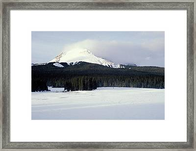 A Cold Wind Framed Print by Brent L Ander