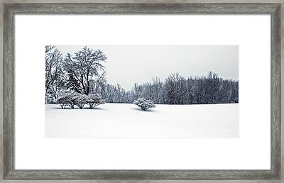 A Cold Winters Day Framed Print by Aimee L Maher Photography and Art Visit ALMGallerydotcom