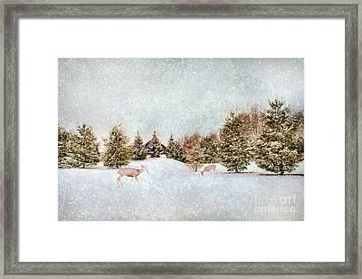 A Cold Winters Day Framed Print by Darren Fisher