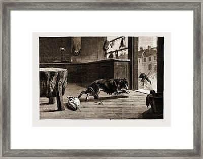 A Corner In Pork Baffled Framed Print