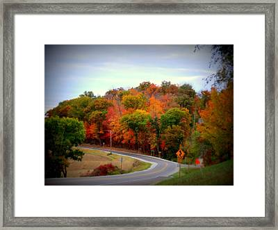 A Country Road In Autumn 1 Framed Print by Kay Novy