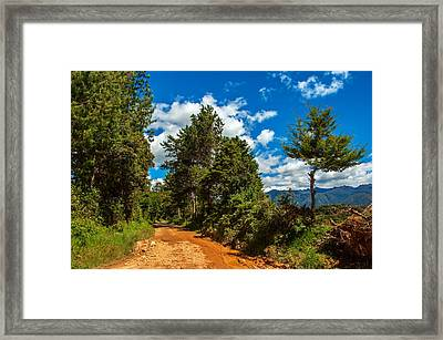 A Country Road In Colombia. Framed Print by Jess Kraft