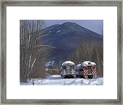 A Couple Of Cold Budds 01 Framed Print