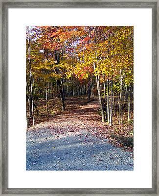 A Courtry Lane In Autumn Framed Print by Douglas Barnett