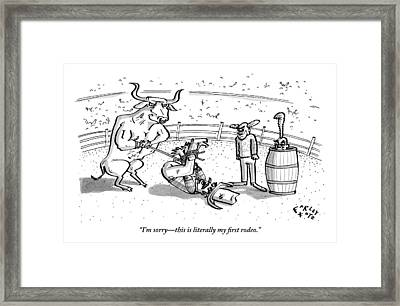 A Cowboy Has Been Hogtied And Subdued Framed Print