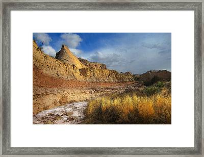 A Coyote At Pawnee Arroyo Framed Print by Ric Soulen