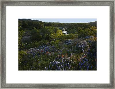 A Creek In Llano County  Framed Print