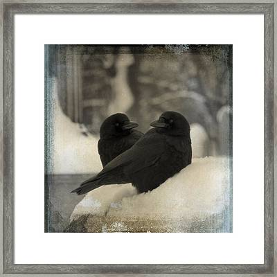 A Crow Couple Framed Print by Gothicrow Images