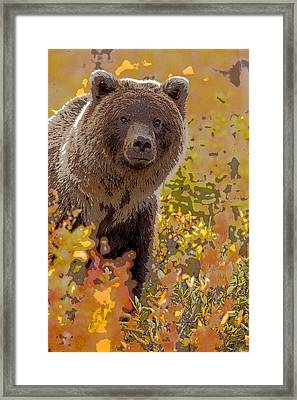 A Curious Look- Abstract Framed Print